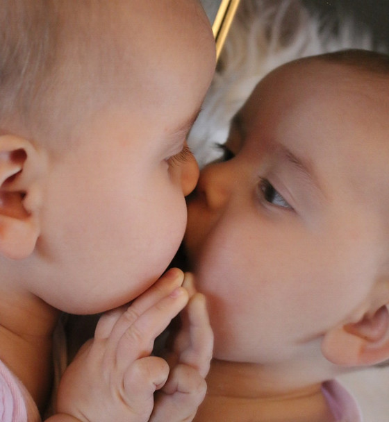 Mirror Neurons: How We Know What Others Are Feeling
