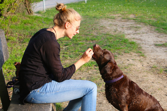 Why We Behave The Way We Do:  Conditioning, The Unconscious and Pavlov's Dogs