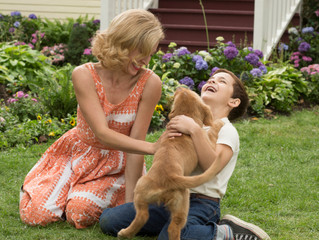 A Dog's Purpose FILM REVIEW