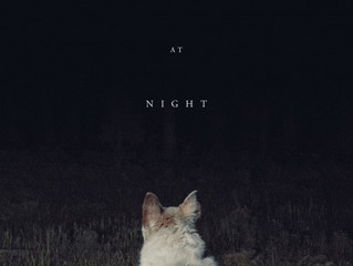 It Comes At Night FILM REVIEW