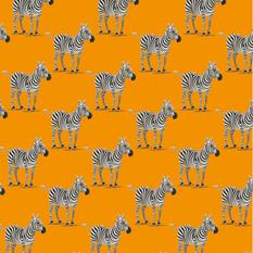 Zebra .png
