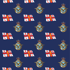 RAF and RNLI Design.png