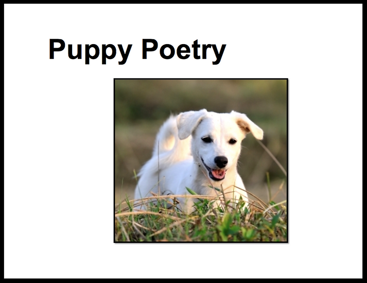 Puppy Poetry