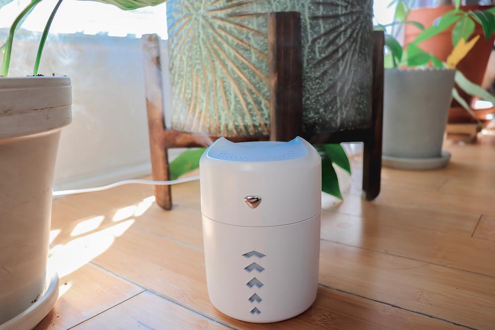 Plant Humidifier