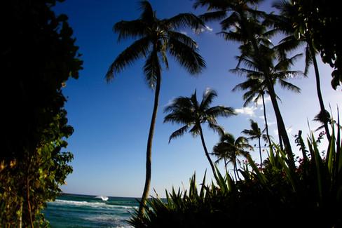 kauai photographer (71 of 118).jpg