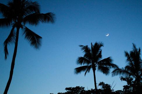 kauai photographer (112 of 118).jpg