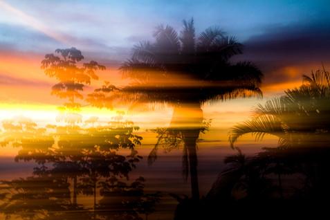 kauai photographer (10 of 118).jpg