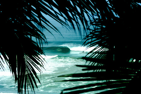 kauai photographer (29 of 118).jpg
