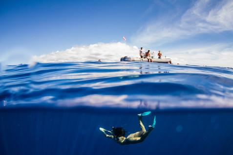 kauai photographer (102 of 118).jpg