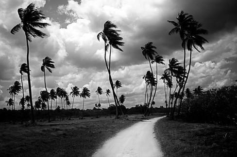 kauai photographer (11 of 118).jpg
