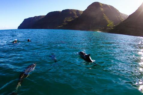 kauai photographer (100 of 118).jpg