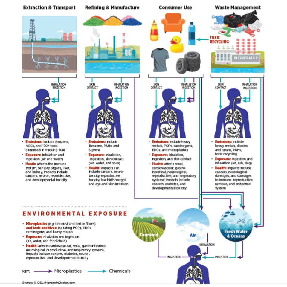sources of microplastics in water and food