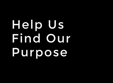 Help Us Find Our Purpose