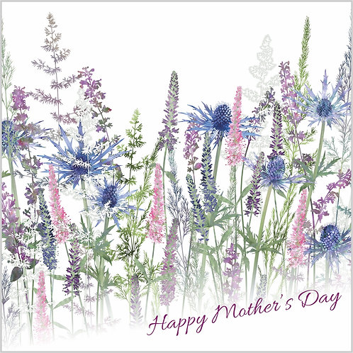 Flower Art / Floral Mother's day / Mothering Sunday Card 'Fairytale Meadow' (Grasses, Sea Holly, Veronica, Catmint, Cat Mint)