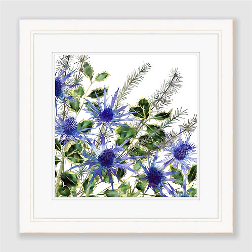 Holly Bouquet Print