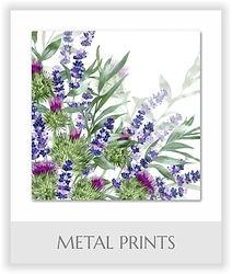 Metal Prints.jpg