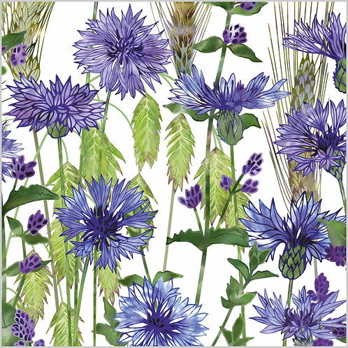 Floral blank greeting card with blue cornflowers, catmint flowers, northern sea oats and barley ears.