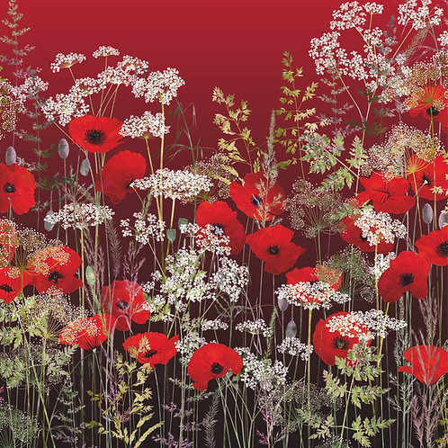 Flower Art / Floral Greeting Card 'Poppy Field at Sunset' (Poppies, Red Poppies, Poppy, Cow Parsley, Grasses)