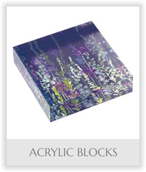 Acrylic Blocks.jpg