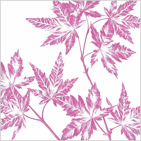 Flower Art / Floral Greeting Card 'Japanese Acer Leaves'