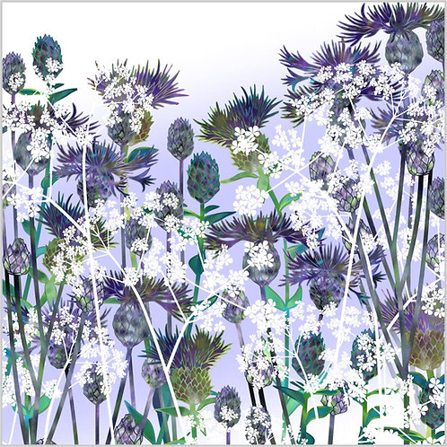 Floral blank greeting card with blue centaurea knapweed flowers and white cow parsley.