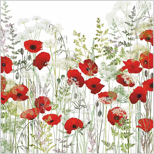 Flower Art / Floral Greeting Card 'Poppy Field' (Poppies, Red Poppies, Poppy, Cow Parsley, Grasses)