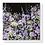 Thumbnail: Midnight Floral Symphony Card