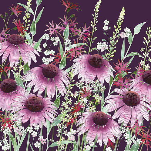 Floral blank greeting card with echinacea or coneflowers, pink forget-me-nots, ragged robin and loosestrife flowers.