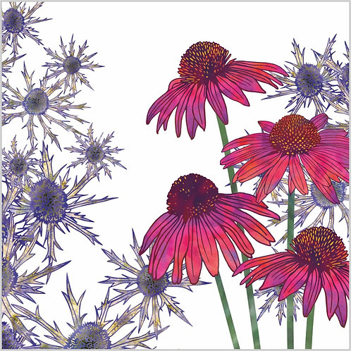 Flower Art / Floral Greeting Card 'Echinacea Reverie' (Echinacea, Sea Holly, Eryngiums)