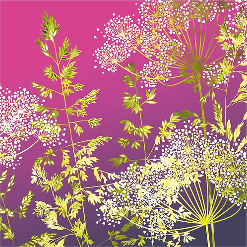 Flower Art / Floral Greeting Card 'Sunset Florets' (Grasses, Cow Parsley, Hedge Parsley)