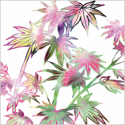 Blank greeting card with pink and green autumn acer leaves.