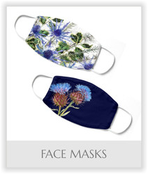 Face Masks.jpg