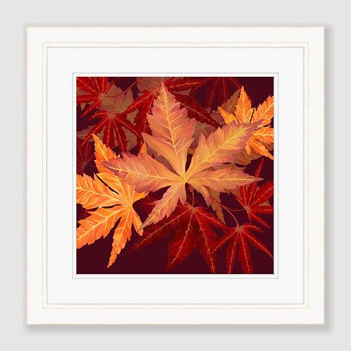 Autumn Acers Print