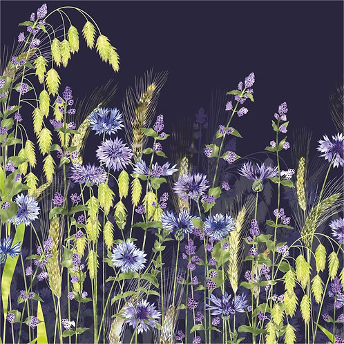 Flower Art / Floral Greeting Card 'Midnight Field of Fantasia' (cornflowers, catmint, northern sea oats, wheat ears, rye)