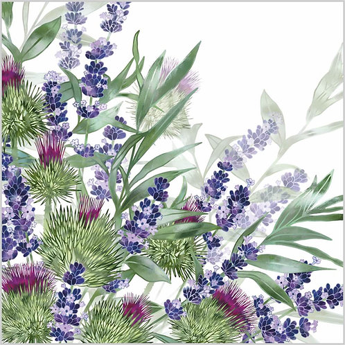 Flower Art / Floral Greeting Card 'Hints of the Highlands' (lavender, purple flowers, thistles)