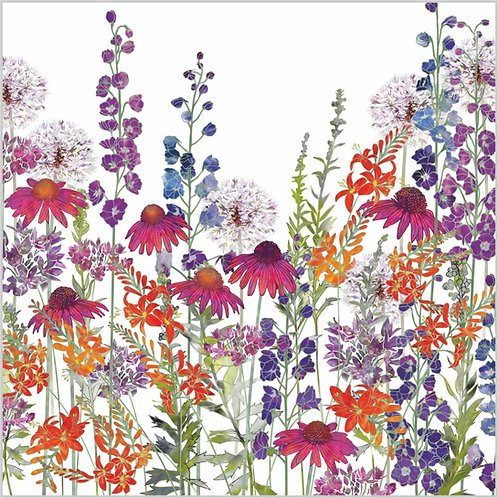 Floral blank greeting card with delphiniums, montbretia or crocosmia flowers, echinacea or coneflowers and alliums.