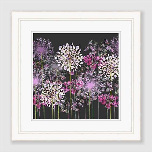 Allium Meadow Print