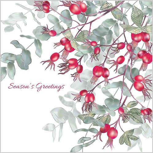 Scarlet Rosehips Card