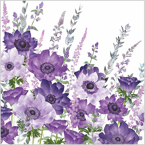 The Morning Anemone Patch Card