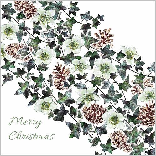 Floral Art Christmas Card 'Christmas Rose Garland', Christmas Rose, Ivy Leaves, Ivy, Pine Cones, Christmas Roses