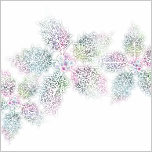 Flower Art / Floral Christmas Card / Winter Card 'Ethereal Holly' Holly Leaf Skeletons & Holly Berries