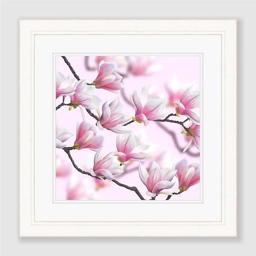 Japanese Magnolia Blossoms Print