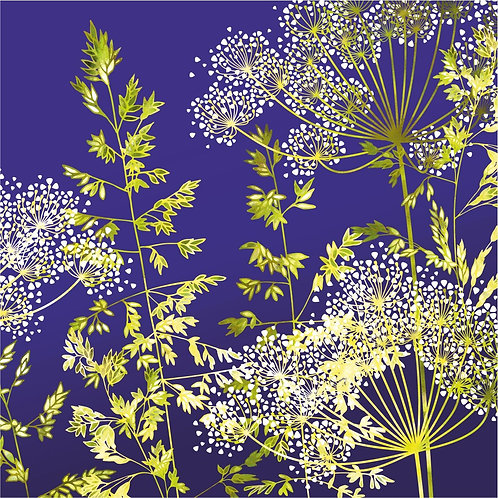 Flower Art / Floral Greeting Card 'Midnight Florets' (Grasses, Cow Parsley, Hedge Parsley)