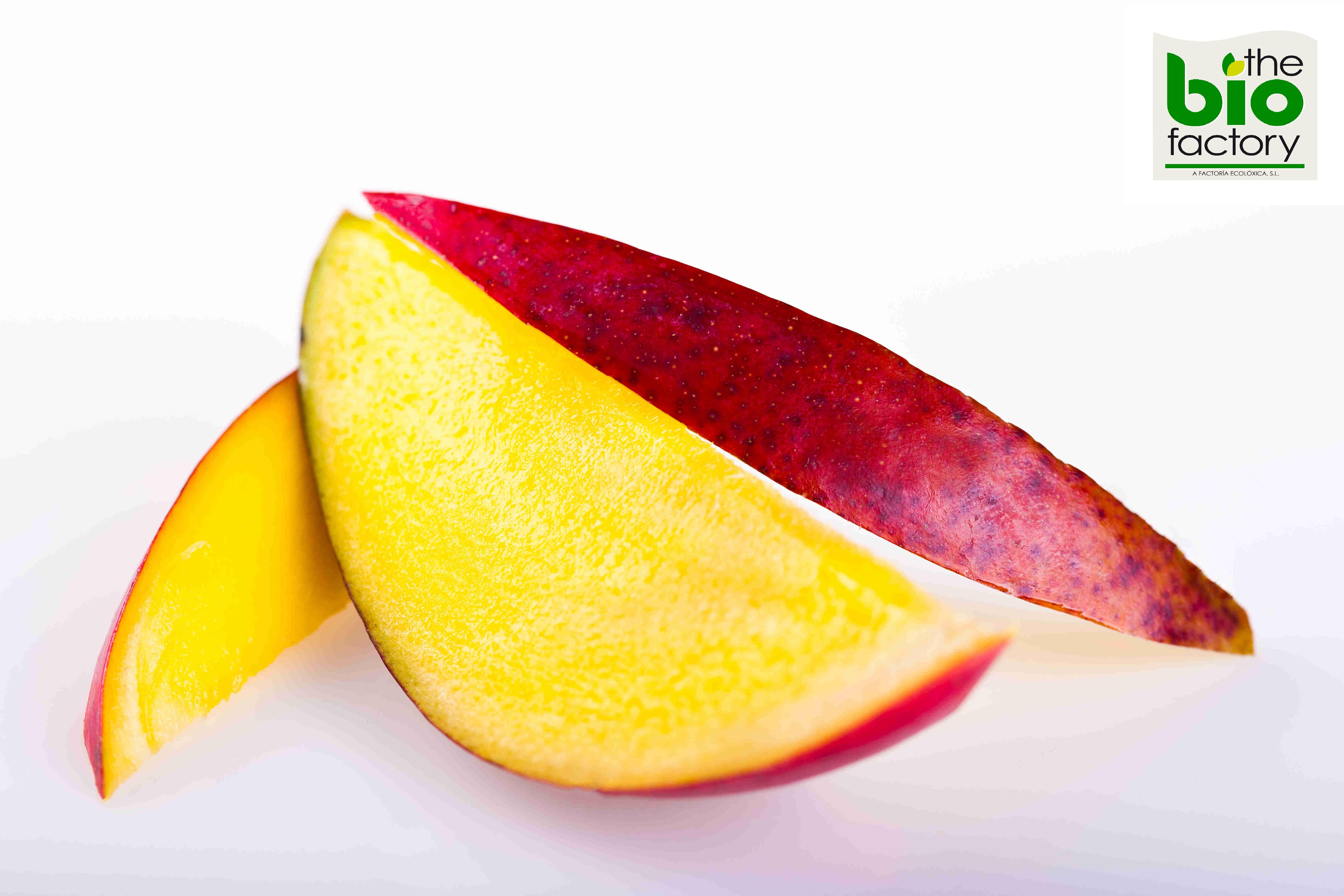 Mango_ecológico_the_bio_factory-_a_factoria_ecoloxica.jpg