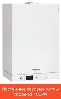 Vitopend 100-W.jpg