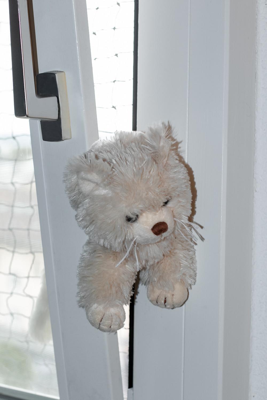 Stoff Katze im Kippfenster eingeklemmt