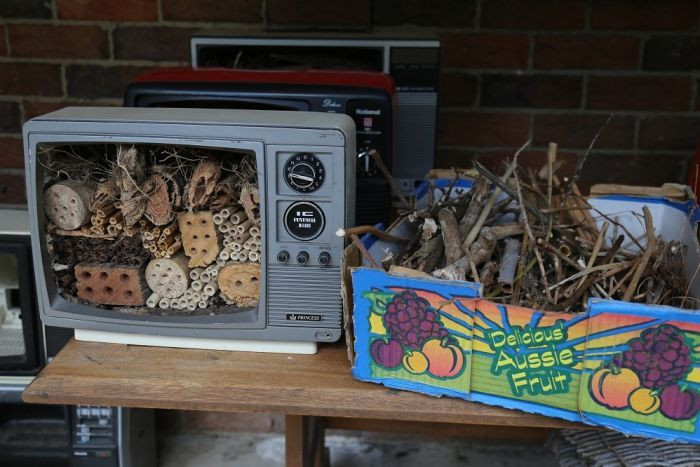 Bee Hotel and Natural Materials