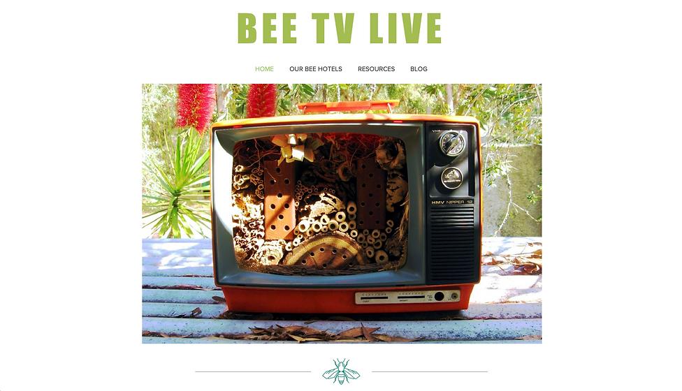 BEE TV LIVE