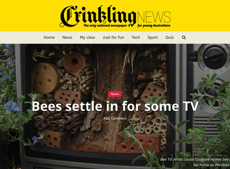 Crinkling News National Newspaper brings the native bee & insect TV's to the younger readers