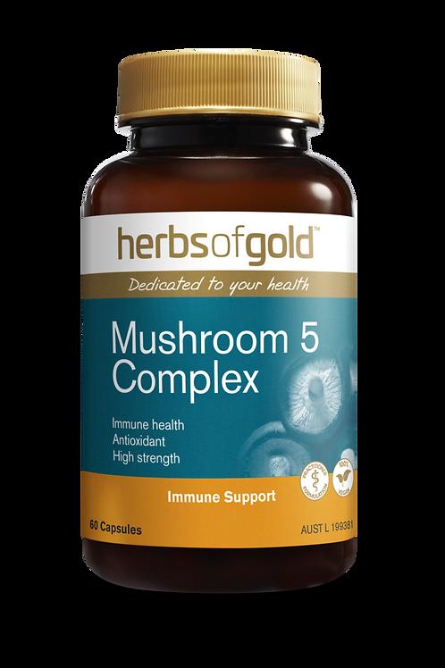 Mushroom 5 Complex